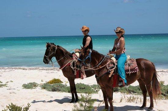 Ridning fra Riviera Maya