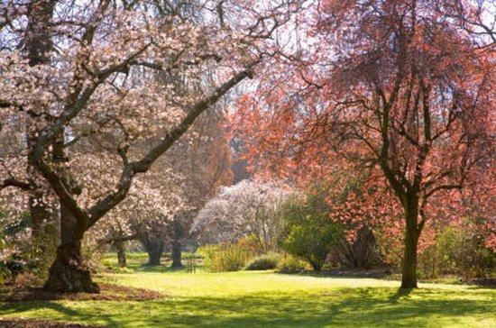 Tour por los jardines de medio día de...