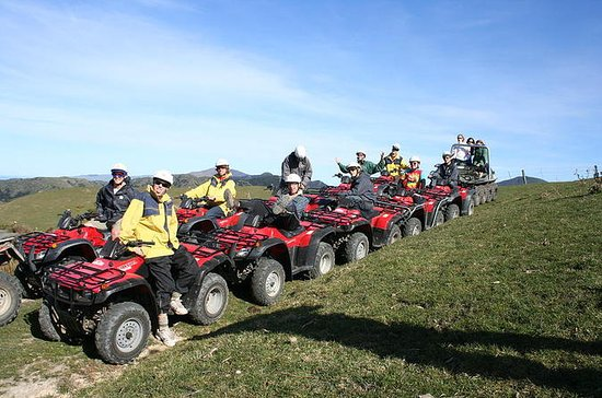 Kaikoura Quad Bike Tour desde...