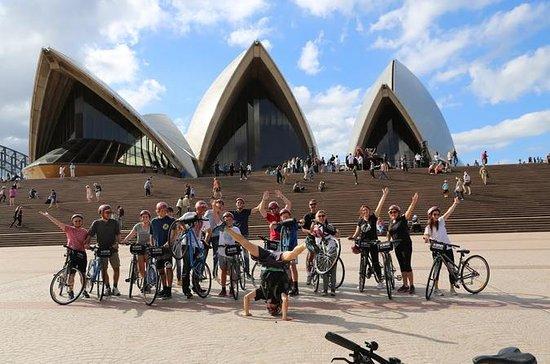 Recorridos turísticos en bicicleta...