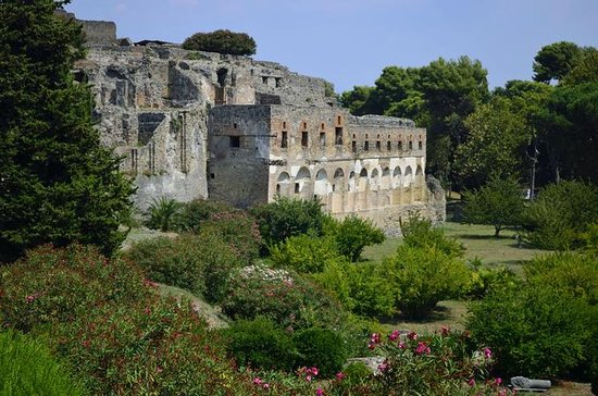 Private Tour: Pompeii Half-Day Trip...