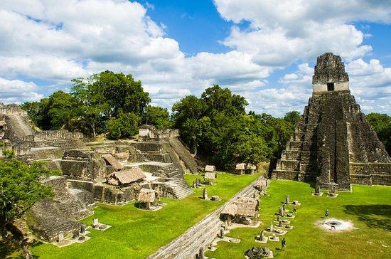 Excursão diurna em Tikal saindo de...