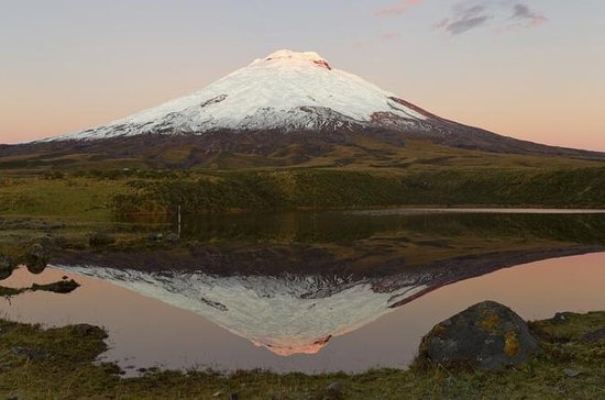 National Park of Cotopaxi dagsutflykt ...