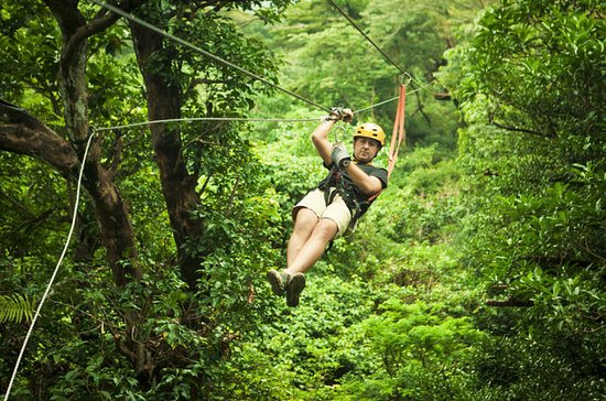 Sarapiqui River Sightseeing Cruise and Zipline Canopy Tour from San...
