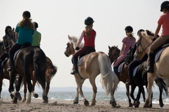 Tour a cavallo da Cancun