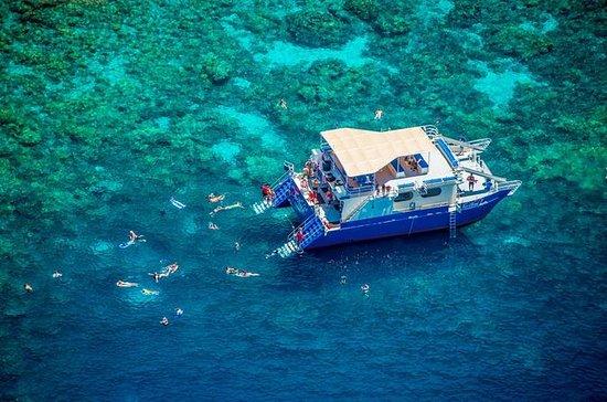 Kealakekua Bay Deluxe Snorkel Cruise