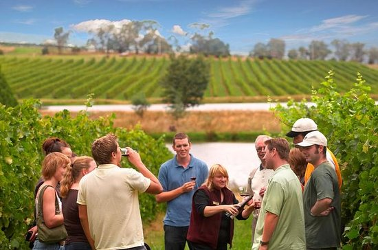 Yarra Valley Wine and Winery Tour...
