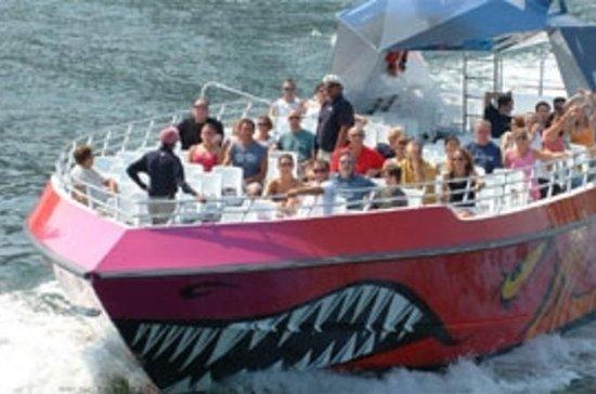 Boston Codzilla: Thrill Boat Ride