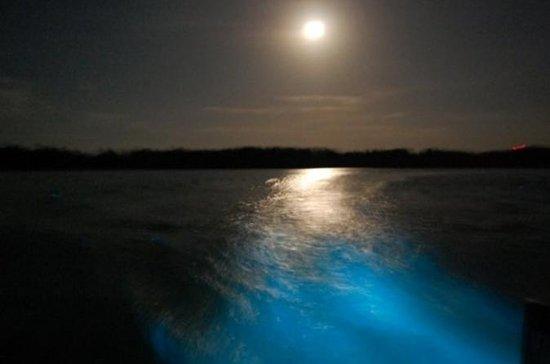 Croisière nocturne sur le lagon...
