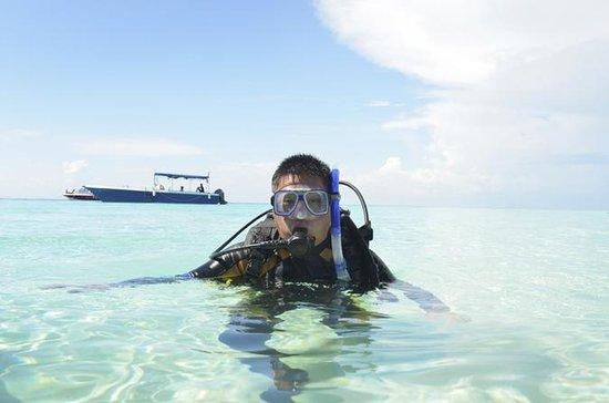 Oppdag dykking i St Maarten