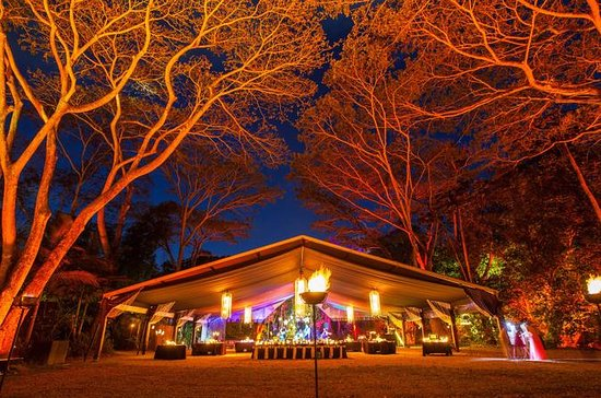 Cairns Flames of the Forest Dining...