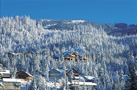 Private Tour: Whistler Day Trip from...