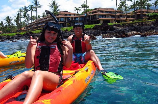 Paddle, Snorkel and Learn to Surf ...