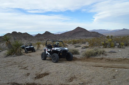 Hidden Valley and Primm Extreme RZR...