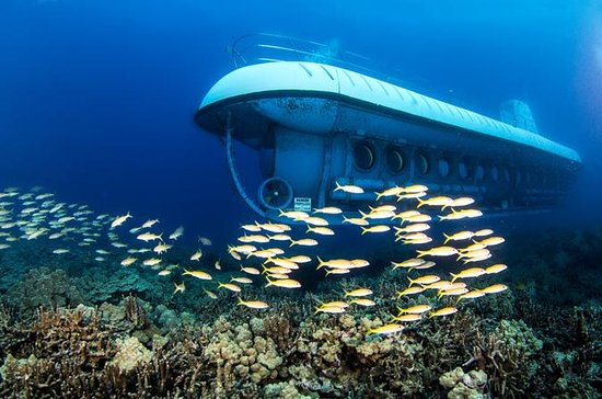 Oahu 2-Hour Atlantis Submarine Tour...