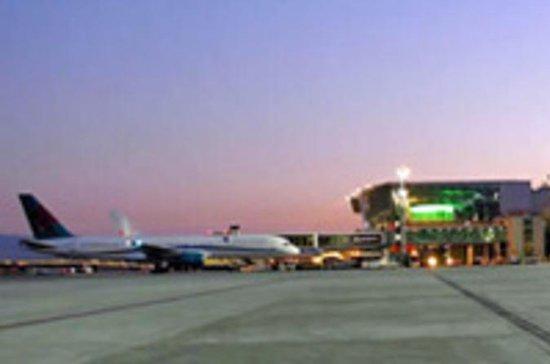 Trasferimento di arrivo privato dall'aeroporto di Torino