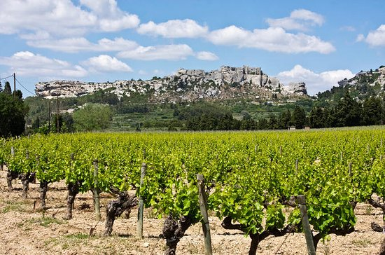 Les Baux de Provence Tour from