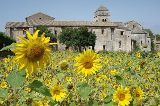 Private Provence Tour: I Van Goghs...