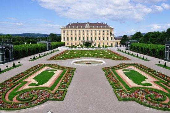Evite las colas: visita guiada al Palacio de Schönbrunn y recorrido...