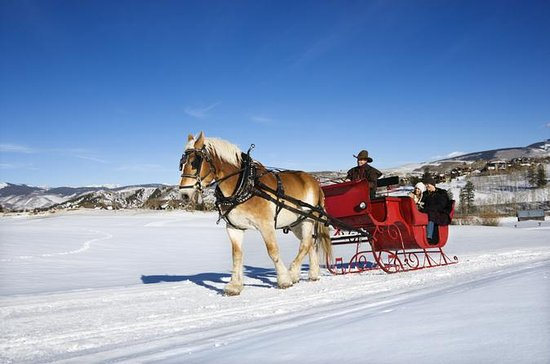 Private Horse-Drawn Sleigh Ride from...