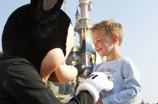 Traslado privado: Disneyland Resort Paris
