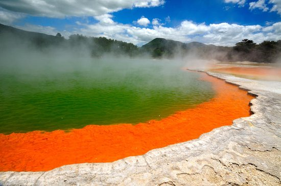 Rotorua Eco Thermal Small Group Full-Day Tour