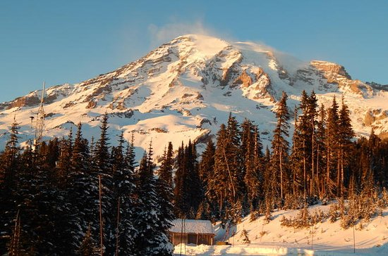 Mt. Rainier dagstur fra Seattle