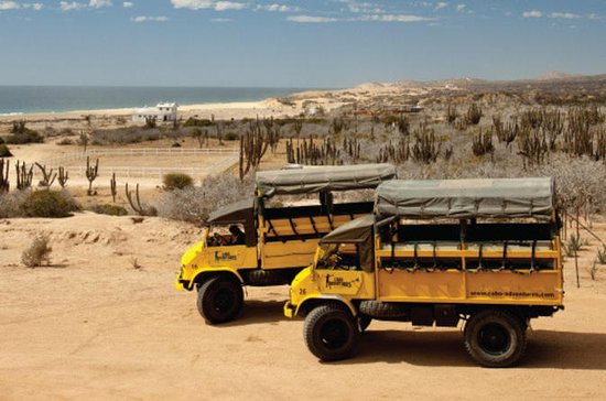 Baja Ranch Tour and Camel Safari from ...