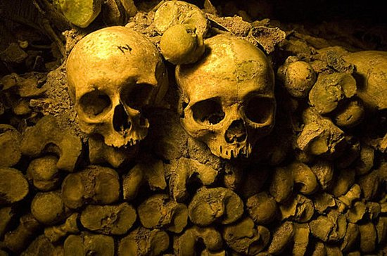 Skip the Line: Catacombs of Paris Small-Group Walking Tour  (234155849)