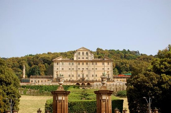 Frascati Wine Tasting Tour from Rome