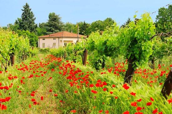 Excursión de un día a la Toscana...