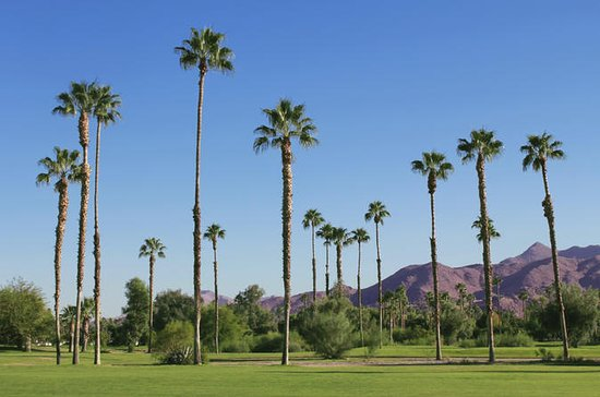 Palm Springs und Outlet-Shopping ...