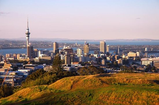 Auckland Discovery City Tour