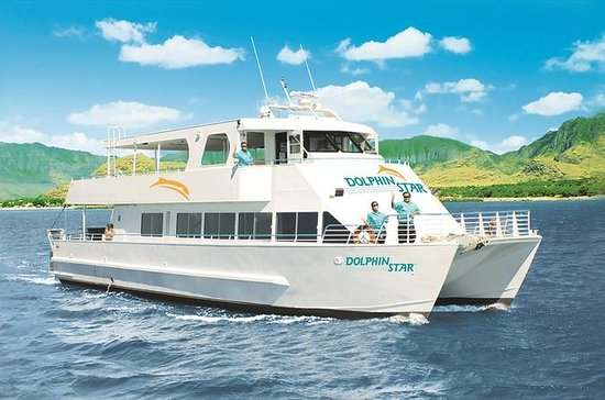 Oahu Dolphin-Watching Cruise with...