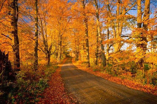 New England Fall Foliage Guided...
