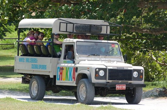 Safariabenteuer im Jeep ab Montego Bay