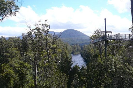 Huon Valley and Tahune Forest Airwalk ...