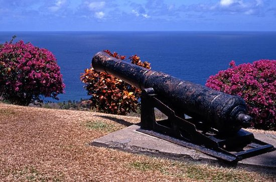 Tobago Island Sightseeing and...