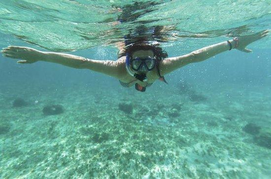 Acapulco Snorkling Tour