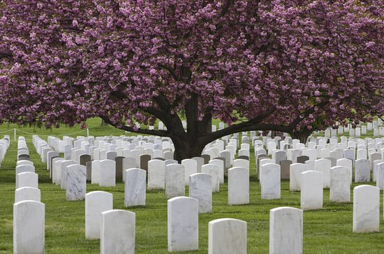 Arlington National Cemetery Hop-On...