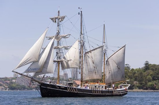 Sydney Harbour Eftermiddag Tall Ship...