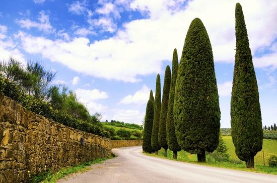 Tuscany Cheese and Wine-Tasting Tour...
