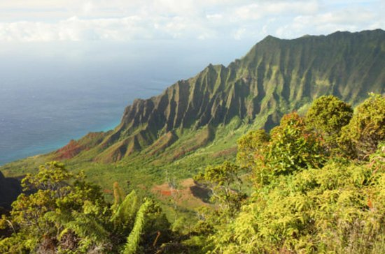 Full-Day Kualoa Ranch Adventure
