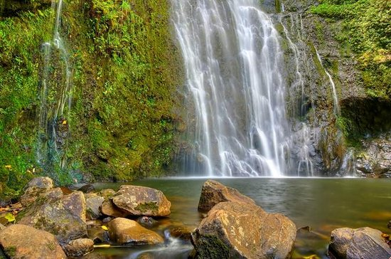 East Maui Waterfalls and Rainforest ...
