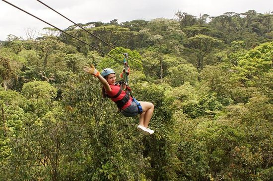 6 in 1 Tour: Rainforest Adventures