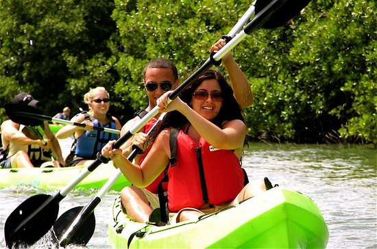 St Thomas Mangrove Lagoon Kayak and