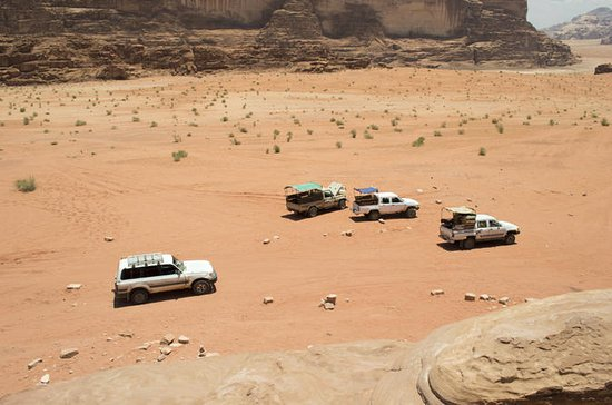 Desert Safari Tour from Jerusalem