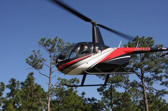 Helikoptertur i Orlando från ...