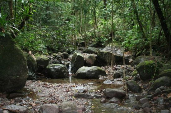 St Kitts Half-Day Rainforest Tour