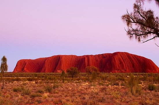 Highlights von Ayers Rock ...